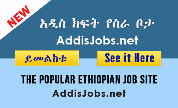 Junior Accountant, Addis Ababa, Ethiopia